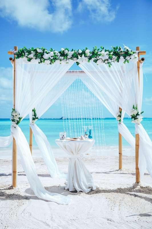 Фото 14493412 в коллекции Официальная свадьба в Доминикане на пляже Juanillo в Кап Кане {Сергей и Кристина} - Caribbean Wedding - свадьба в Доминикане