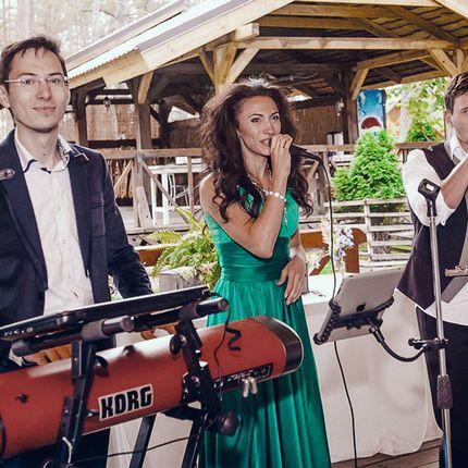 Музыкальное сопровождение свадьбы, 1 сет 30 минут