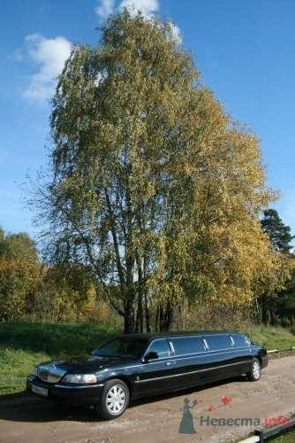 Линкольн 9 мест - фото 941 Limo-pro лимузины на свадьбу