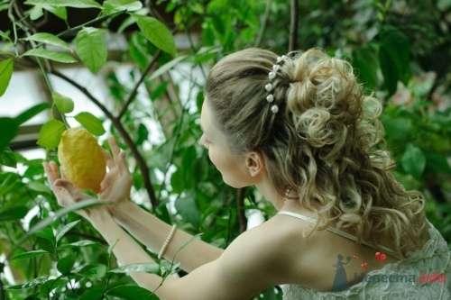 Фото 12128 в коллекции Мои фотографии - Свадебный стилист Елена Боронина