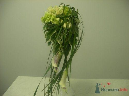 Дизайнерский букет невесты с каллами - фото 1108 Флорист-дизайнер Елена