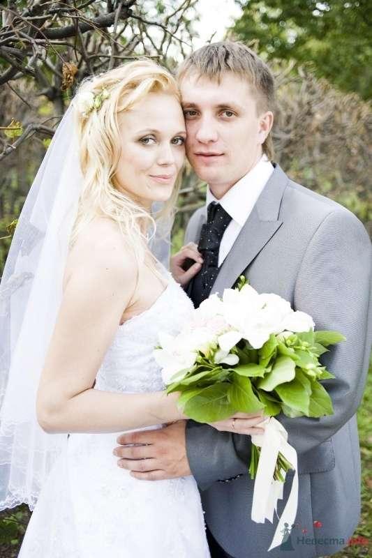 Фото 50698 в коллекции Свадьба - Kolibri