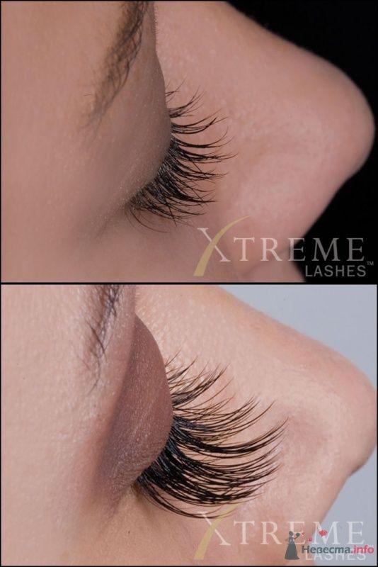 Фото 33519 в коллекции Официальная фотосессия Xtreme Lashes - Мастер по наращиванию ресниц - Екатерина Коршунова