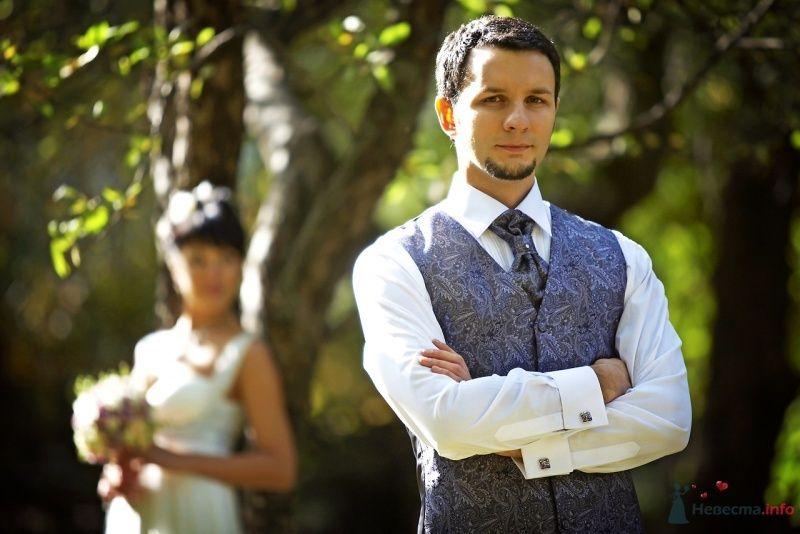 Синяя узорчатая жилетка и синий узорчатый галстук с белой бусиной, - фото 62366 Busic