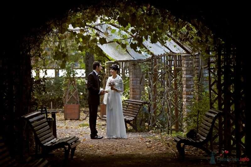 Фото 62388 в коллекции Wedding Day - Busic