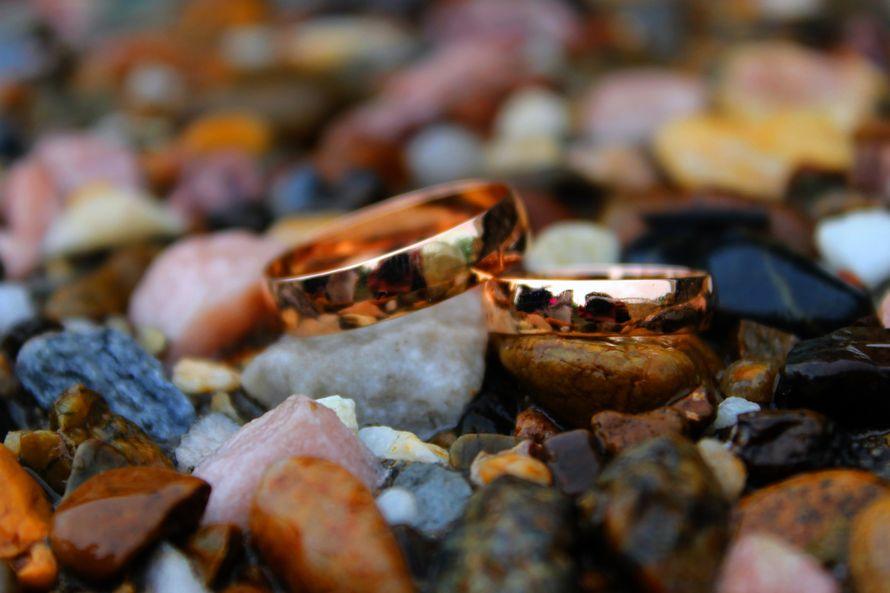 Фото 11233390 в коллекции Wedding - Фотограф Харитонова Юля