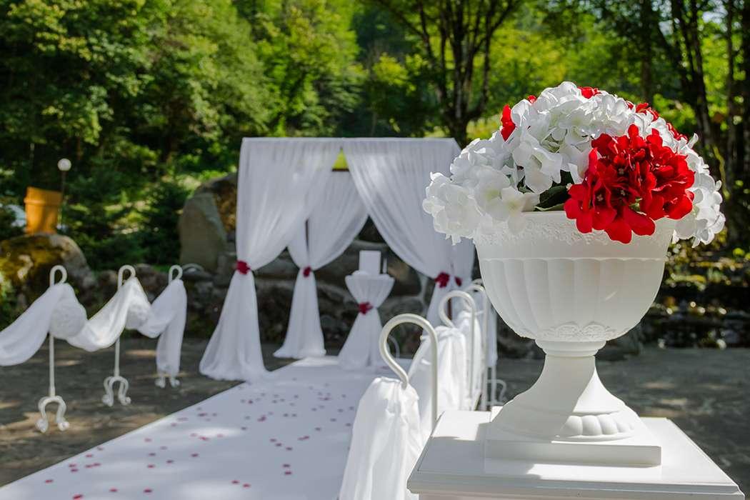 Арка-шатер - фото 11294924 Вероника пожени - аренда арок, декора, фотозоны