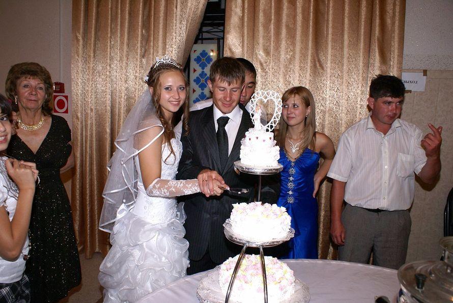 Фото 11377804 в коллекции Свадебные - Видеограф Рузанов Олег