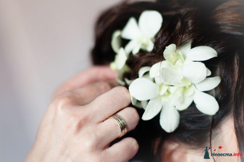 Фото 118075 в коллекции Свадебные - Mitiko
