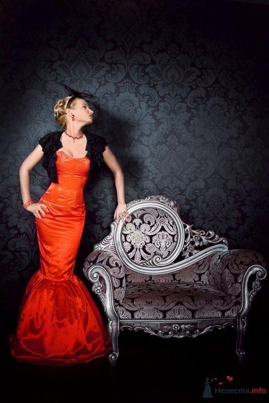 Образ для фотосессии: гламур - фото 45837 Стилист-визажист Кандалова Елена