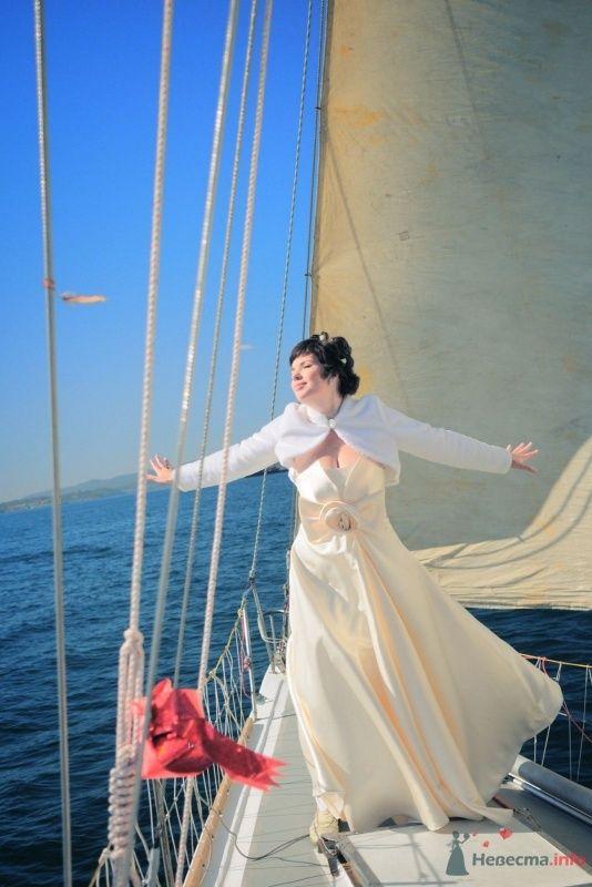 Фото 57629 в коллекции Наша свадьба глазами Катерины Черкашиной - Солнышонок