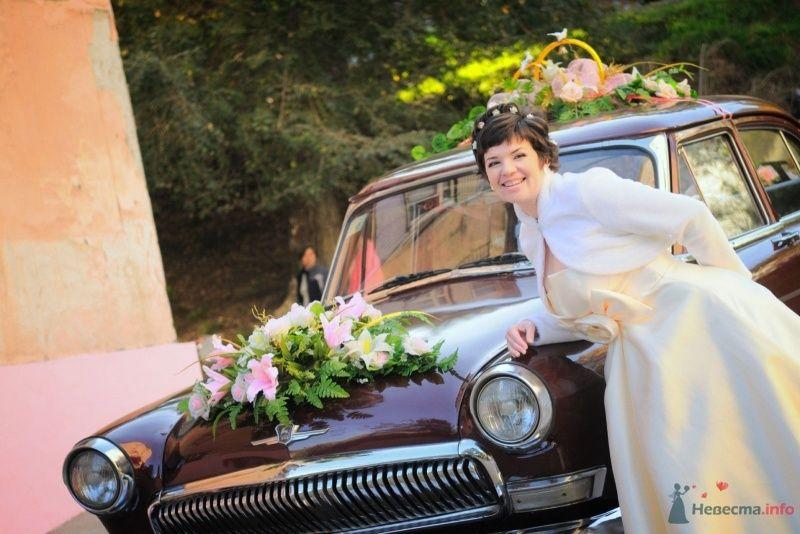 """""""Волга""""цвета бордо , украшенная экибанами и кольцами на крыше, на фоне зелени парка и невесты. - фото 57667 Солнышонок"""