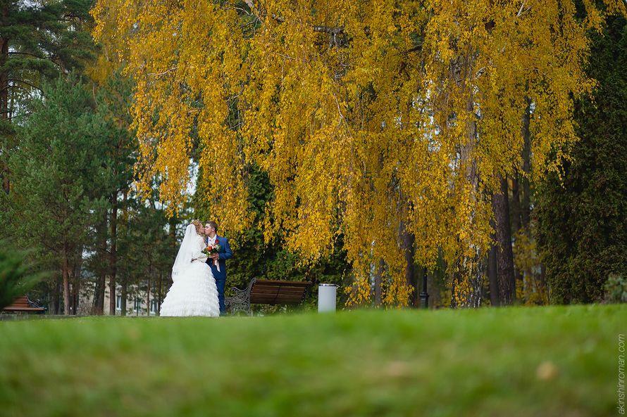 Фото 11984452 в коллекции Wedding - Фотограф и видеограф Роман Акиньшин