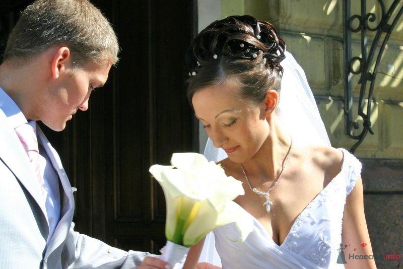 Фото 59700 в коллекции My wedding