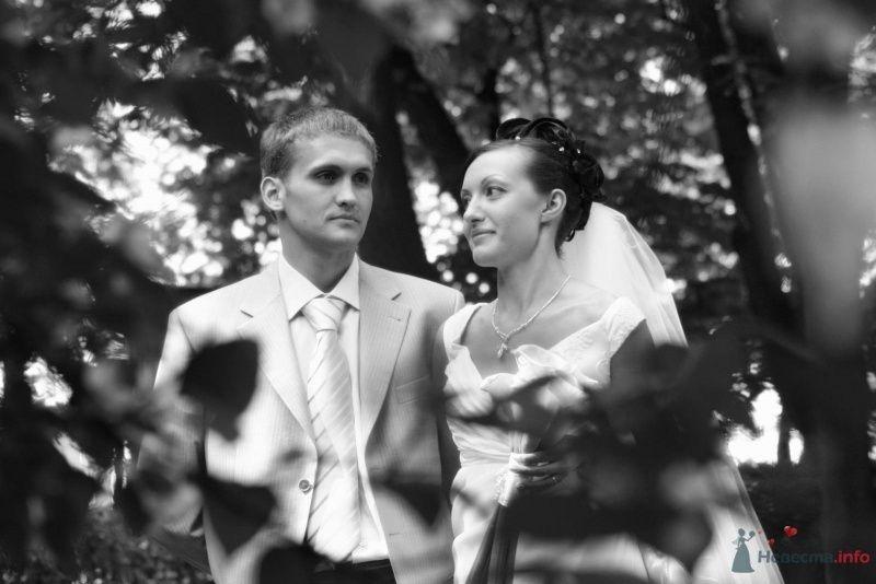 Фото 60068 в коллекции My wedding - Art-anna