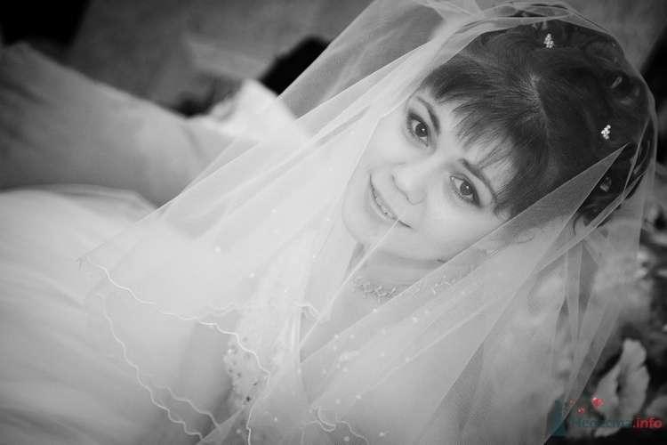 Фото 35767 в коллекции Мои фотографии - Ваш фотограф - Inna Minaeva