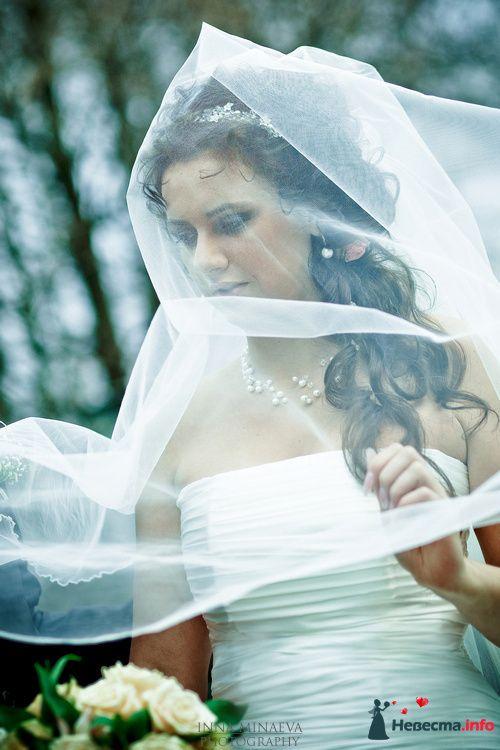 Фото 108705 в коллекции Мои фотографии - Ваш фотограф - Inna Minaeva