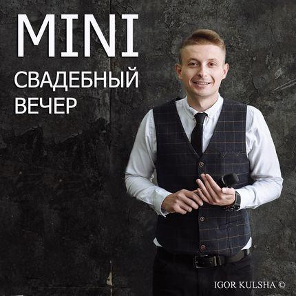"""Проведение свадьбы - пакет """"Семейный вариант"""", 2-4 часа"""