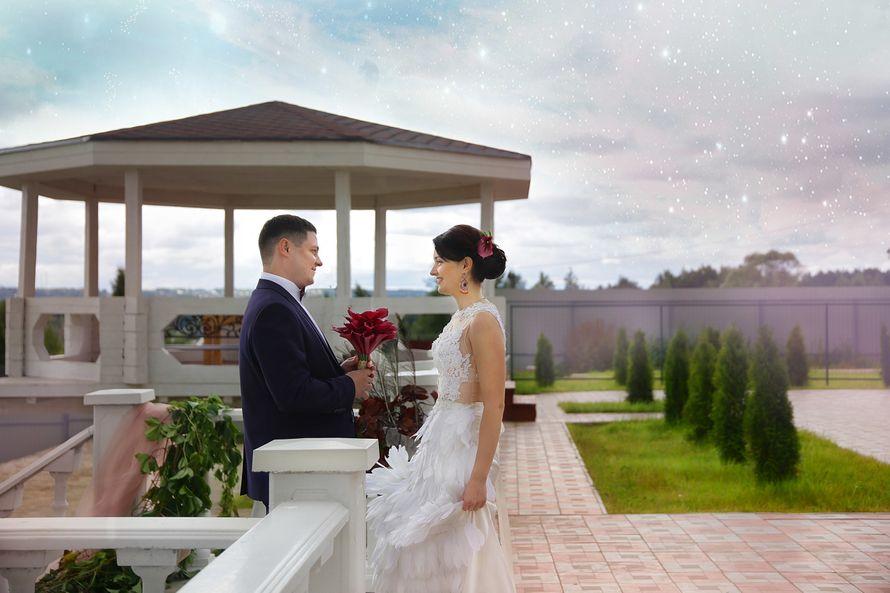 Фото 12295522 в коллекции Свадьба Vadim&Darya - Фотограф Татьяна Максимова