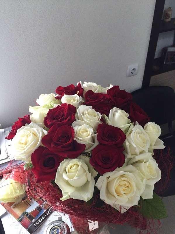 мои розы - фото 12342464 Вероника М.