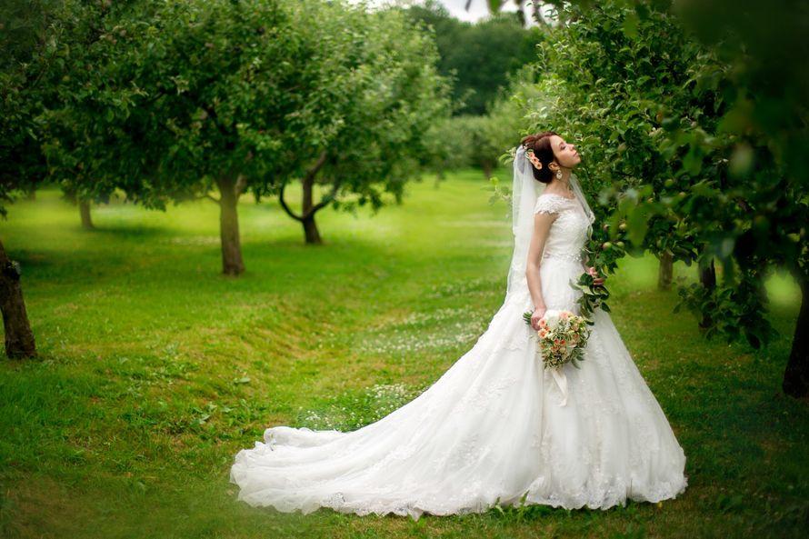 заказ съемки вашей свадьбы 89851660401  - фото 12732664 Anna Popstudio - фотосъёмка