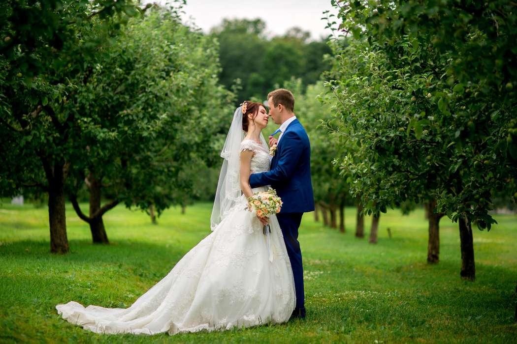 заказ съемки вашей свадьбы 89851660401  - фото 12732674 Anna Popstudio - фотосъёмка