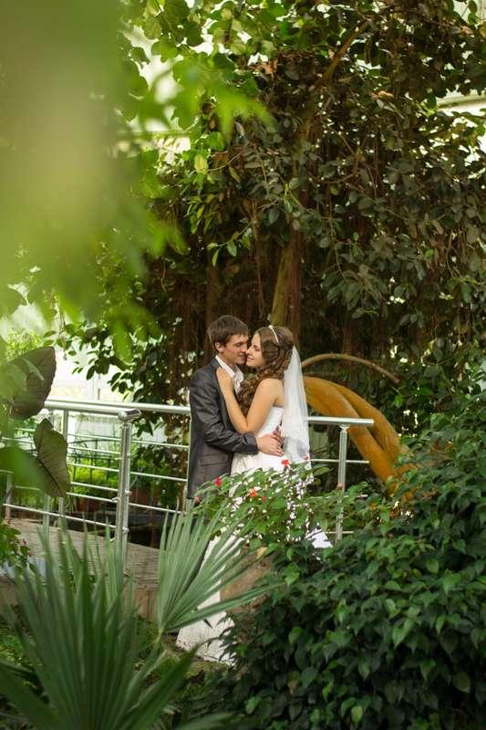 Фото 12889024 в коллекции Свадебная фотосъемка - Nikitina рhotography