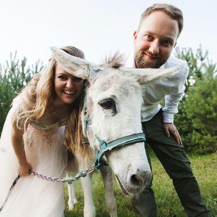 Аренда лошадок и ослика на фотосессию, 1 час