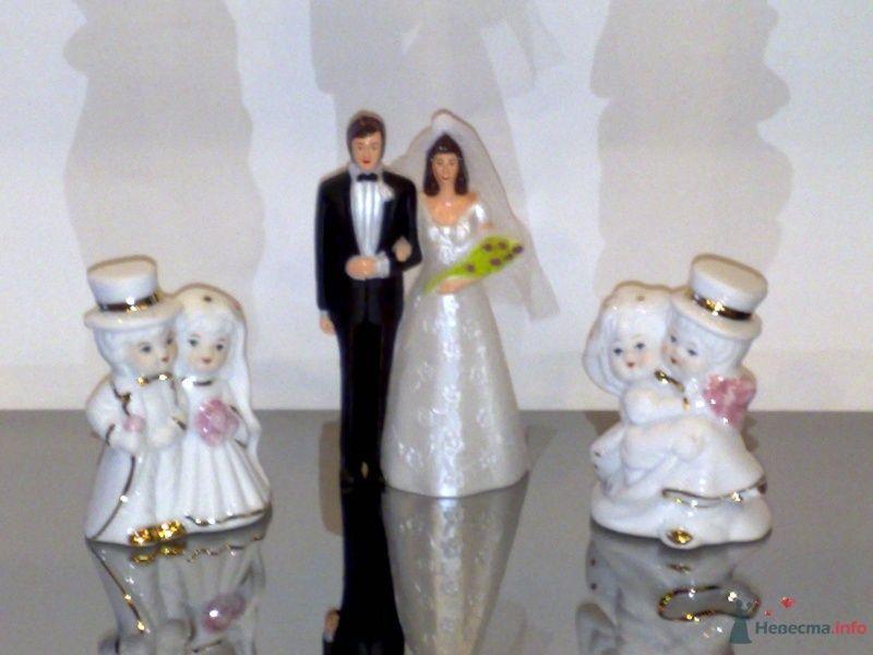 """Фигурки для торта - фото 33069 Компания """"Стильная Свадьба"""""""