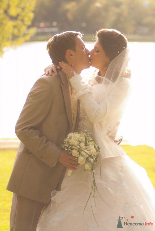 Фото 60673 в коллекции Моя свадьба - GoldenKitten