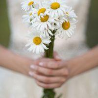 Ромашковый букет невесты 16.06.2012