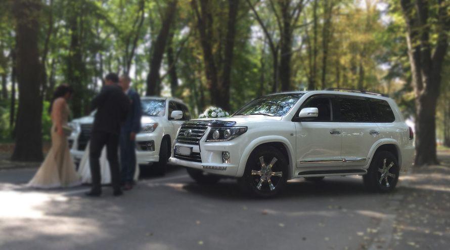 весільні машини Чернівці - фото 14234752 Royal auto - салон проката авто