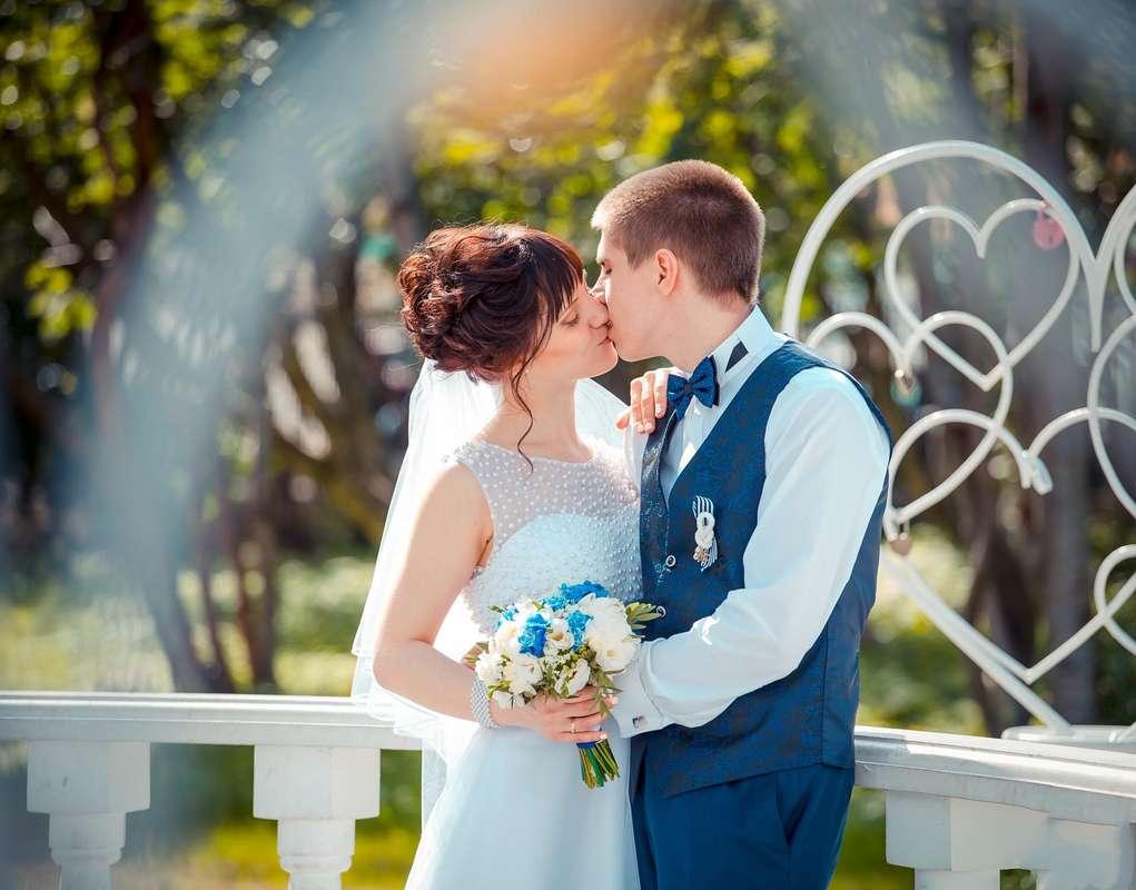 больше фотографии с мурманских свадеб сообщают, что