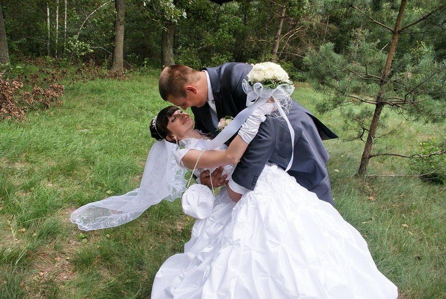 """Фото 14488332 в коллекции Моё свадебное - """"Полесский соболь"""" - проведение праздников"""