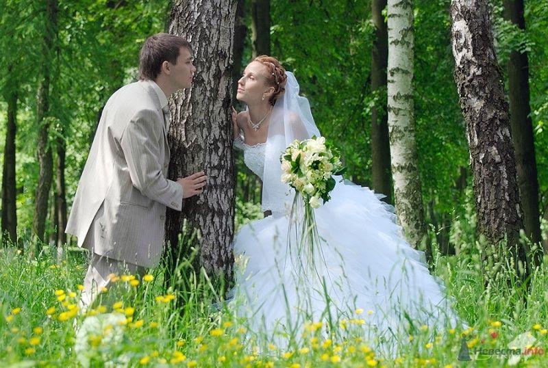Фото 34778 в коллекции Свадьба - Signes