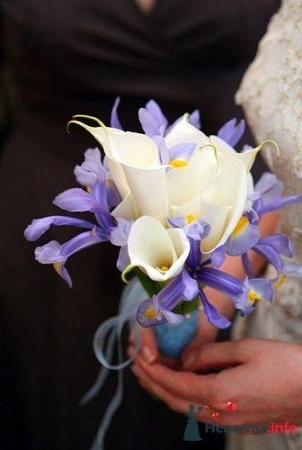 Фото 50605 в коллекции Цвяточки!  - Вашкетова Юлия - организатор свадеб, флорист.
