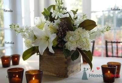 Фото 74484 в коллекции Цвяточки!  - Вашкетова Юлия - организатор свадеб, флорист.
