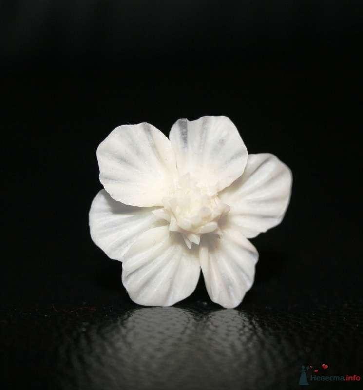 Фото 76310 в коллекции Фарфоровые цвяточки (handmade) - Вашкетова Юлия - организатор свадеб, флорист.