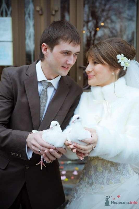 Фото 58872 в коллекции The Best Wedding in the World - Анастасия Деева