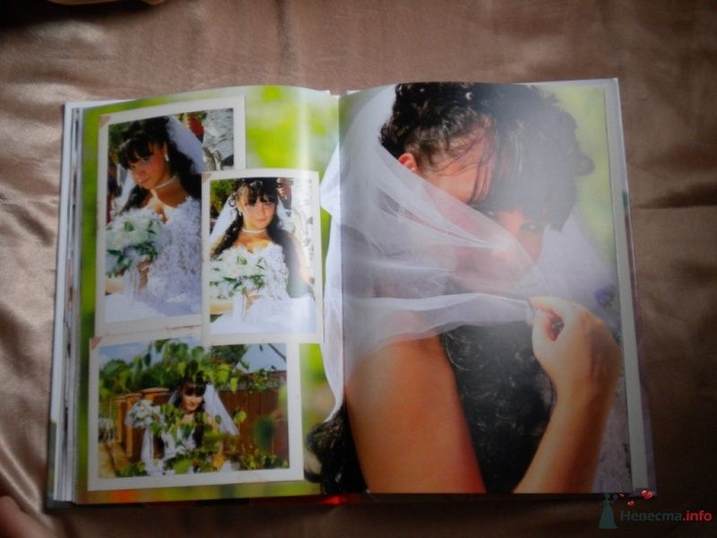 Фото 41793 в коллекции Мои фотографии - Solne4naya