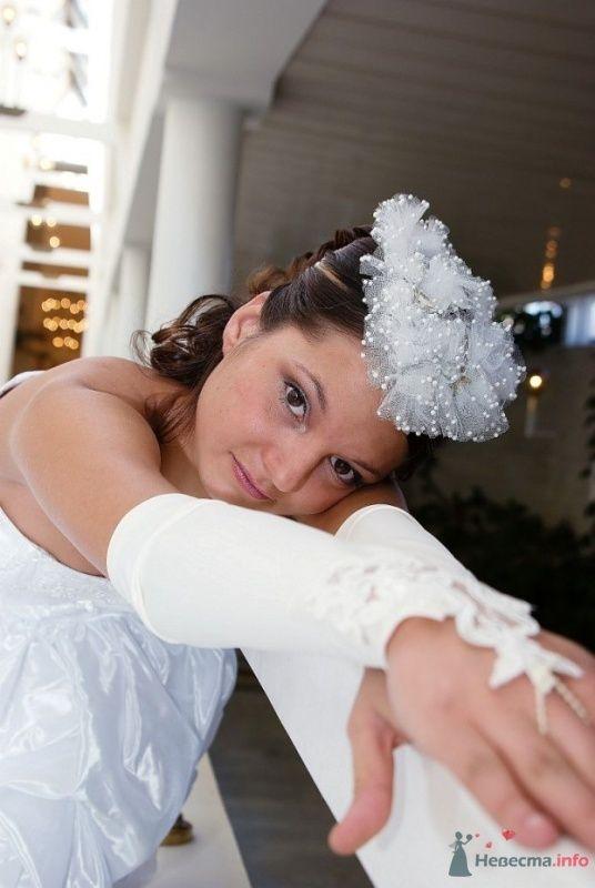 Фото 35487 в коллекции Свадьба СПб - Lunik