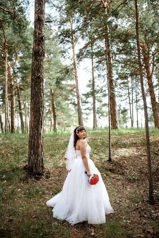 Фото 15102166 в коллекции Портфолио - Фотограф Сергеев Владимир