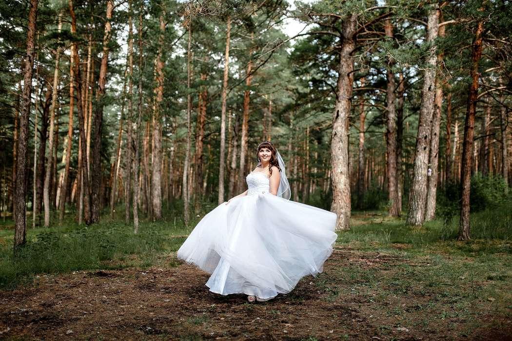 Фото 15102168 в коллекции Портфолио - Фотограф Сергеев Владимир