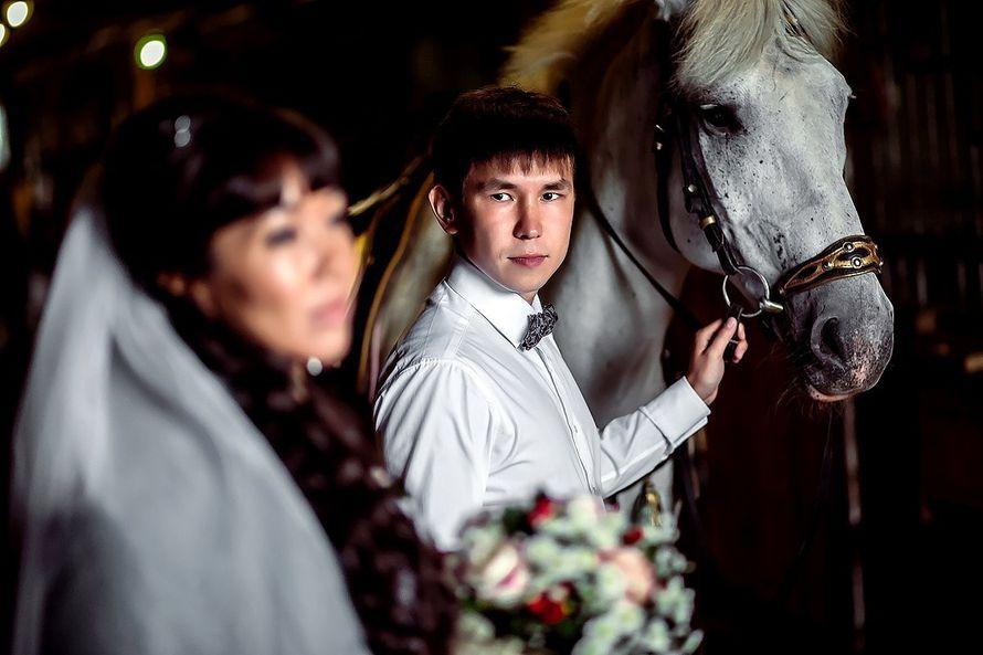Фото 15102214 в коллекции Портфолио - Фотограф Сергеев Владимир