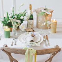 Набор из 4-х цветных лент на стулья +булавки Botanical Garden