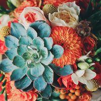 Оранжевый букет невесты из фрезий, астр, роз и зелены сукулентов