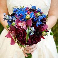 Букет невесты из голубых дельфиниумов, бордовых астр и орхидей