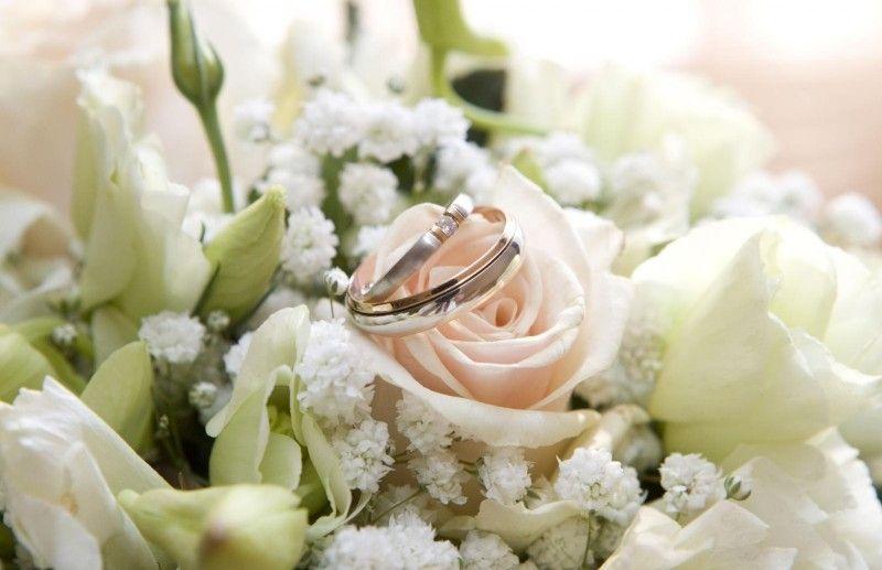 Проведение свадьбы + диджей, 5-6 часов