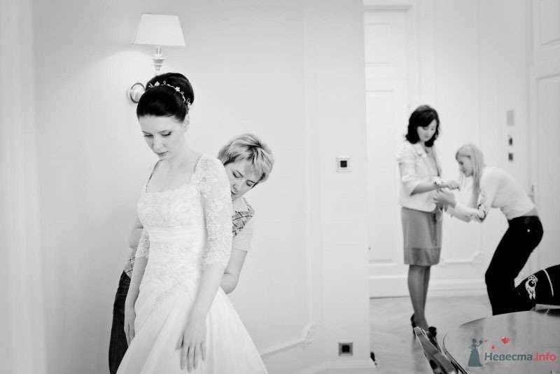 Фото 68008 в коллекции Мои фотографии - Свадебный стилист Надежда Сергиенко