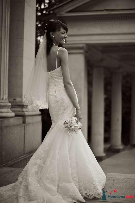Фото 127260 в коллекции Свадебные фотографии - Геннадий Котельников - видео и фотоуслуги